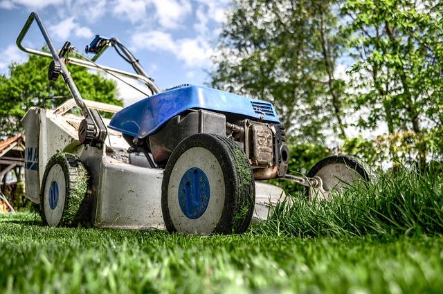 מכסחת דשא מוטורית