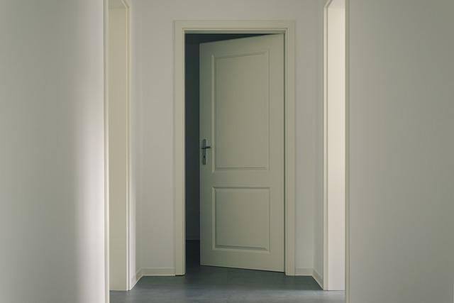 מעצורים לדלת
