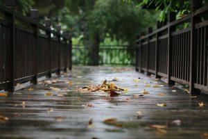קידוחי בטון לניקוז מי גשם בגינות