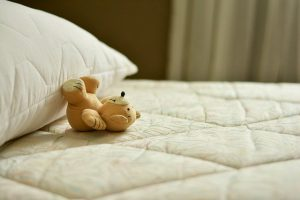הדברת פשפש המיטה