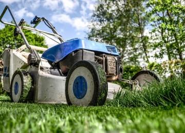 כך תהפכו את הגינה למטופחת ויפה יותר
