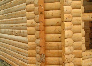 קורות עץ מחיר וכיצד בוחרים?